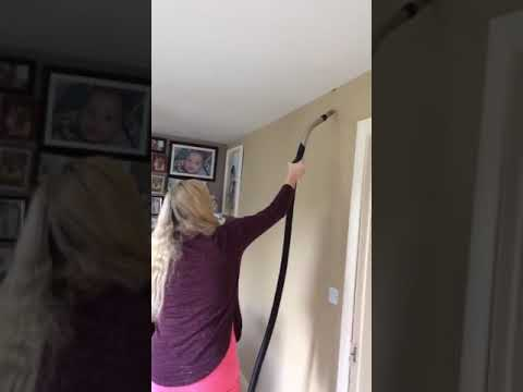 شاهد: فتاة تصطاد عنكبوتا بطريقة غريبة