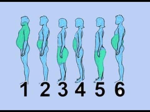 موقع الدهون في الجسم وأفضل طريقة للتخلص منها