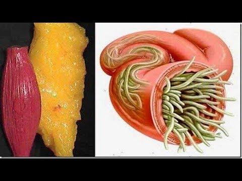 شاهد تخلصي من كل الدهون  مع الليمون والكرفس