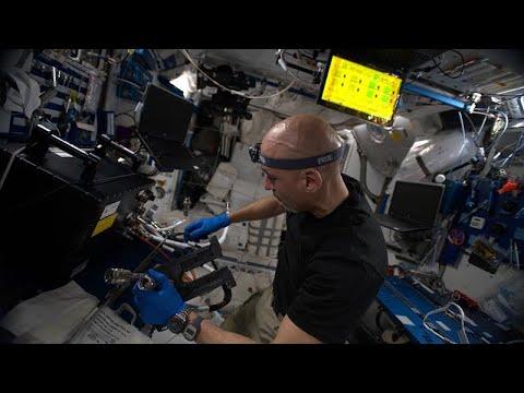 شاهد تطبيق ذكي للحمية الغذائية وعلاقة الجاذبية بالوقت في سلسلة الفضاء