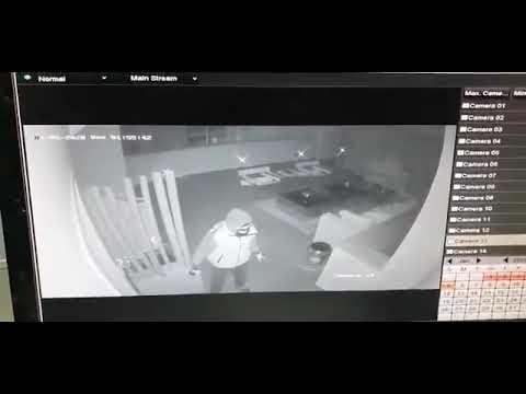 شاهد فادي الهاشم  زوج نانسي عجرم يردي اللص قتيلا بغد تهديده بقتل  أطفاله