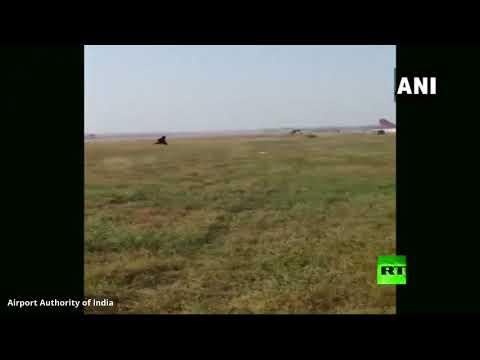 شاهد: مطار في الهند يلجأ لطريقة طريفة تبعد القرود عن مدرج الطائرات