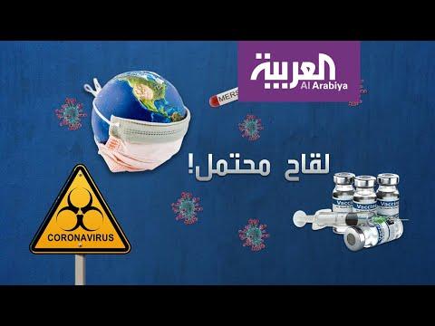 شاهد: سفن سياحية بلا مرسى والسبب فيروس