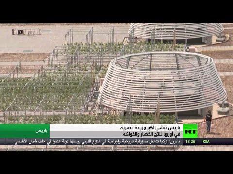 شاهد: باريس تحتضن أضخم بستان حضري في أوروبا