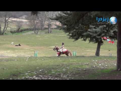 شاهد: مناظر رائعة من مدينة إفران