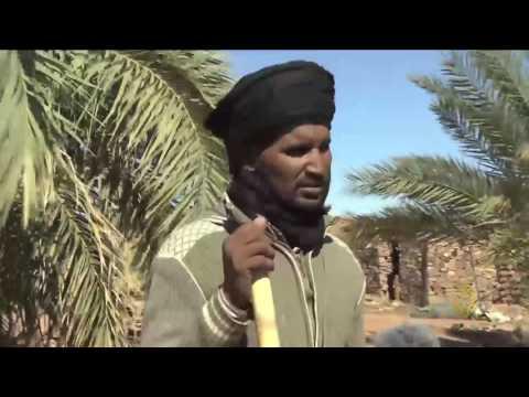 بالفيديو : جولة في منطقة أدرار شمال موريتانيا